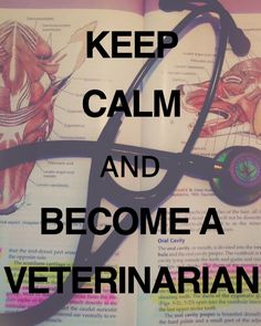 Keep calm and become a Veterinarian. By Alexis Kole at Ross University School Of Veterinary Medicine
