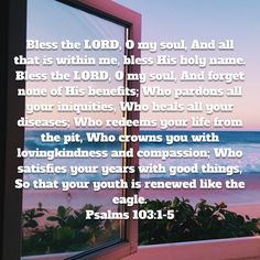 O My Soul, Niv Bible, New American Standard Bible, Bless The Lord, Psalms, Holi, Benefit, Blessed, Healing