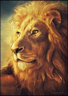 Lion of Judah Lion Images, Lion Pictures, Big Cats Art, Cat Art, Animal Paintings, Animal Drawings, Lion Painting, Lion Wallpaper, Tiger Art