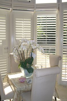 Full height shutters cover the full height of the window, this is our most popular and flexible installation styles offered by plantation shutters. White Shutters, Interior Window Shutters, Best Interior Paint, Home Interior Design, Window Dressings, Soft Furnishings, Living Room Decor, Dining Room, Blinds