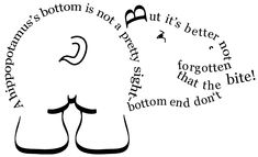 hippobottom without title revised copy Animal Quiz, Modern Poetry, Forms Of Poetry, Free Verse, Dangerous Animals, Inspirational Poems, Hippopotamus, Poetry Quotes, Vulnerability