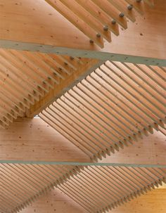 Victoria Leisure Centre, Nottingham | timber roof