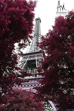 Avi photographe : TOUR EIFFEL Tour Eiffel, Photos, Tower, Travel, Pictures, Rook, Viajes, Computer Case, Destinations