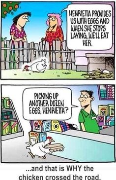 73 Funny Chicken Jokes: Why Did The Chicken Cross The Road?
