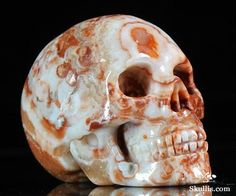 298 Best Skulls images | Skull art, Skull, Skull, bones