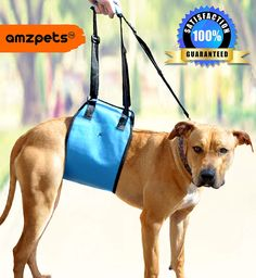 Dog Lift Harness By AMZpets - S / M / L / XL. Support Sling Helps Dogs With Weak Legs Stand Up, Walk, Climb Stairs and Get into Cars. Our Lifting Harness Works Great for Dog Suffering from Orthopedic Problems, Weak Joints and Arthritis. Best Alternative to Dog Wheelchair. RECOMMENDED BY VETERINARIANS ** Awesome dog product. Click the image : Products for dogs
