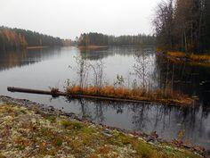Vihovuonne, Kerma, Heinävesi, Eteleä-Savo, 2014