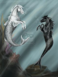 Mermaid horses by SynligSprinkler (aka Johanna) Greek Creatures, Mythical Creatures Art, Mythological Creatures, Magical Creatures, Fantasy Creatures, Sea Creatures, Fantasy Mermaids, Mermaids And Mermen, Pegasus