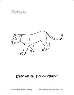 florida printables florida coloring page florida panther