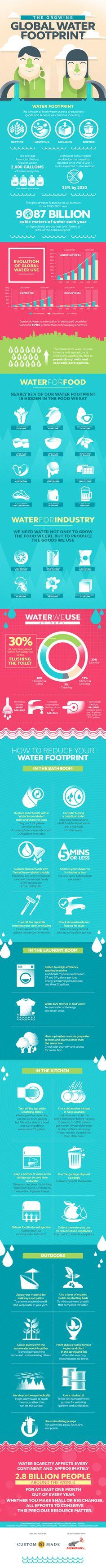 The Growing Global Water Footprint