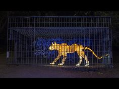 It Took Over 1000 Light Paintings to Create This Impressive Video