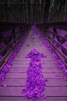 If I must cross a bridge...  I'd want to see the color purple along the way.