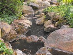 Creeks-And-Streams-2