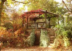 Root cellar surrounded by earth on all sides except at the entrance. There was about a foot of earth above the cellar but to help keep it cooler they also constructed a pergola on top with climbing plants and planted the south-facing bank with shrubs and climbers.