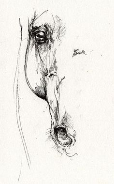 Arabian Horse Sketch 2014 05 24 D Print by Angel Tarantella