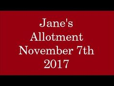 Jane's Allotment November 7th 2017