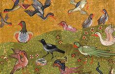 Resultado de imagen de pajaros medievales