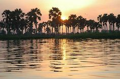 Sunset By The Nile