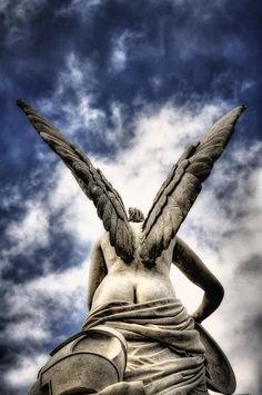 Angel Wings Photograph - Angel Wings Fine Art Print - Marcus Klepper