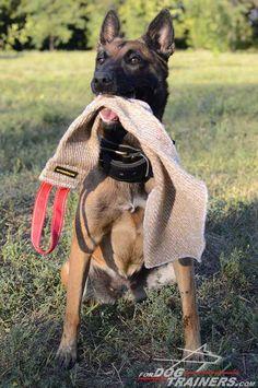 #Dog #Bite #Rag for Prey Drive Training - $15.29 | www.fordogtrainers.com