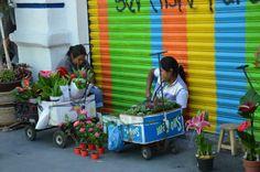 vendedoras de flores de Atlixco
