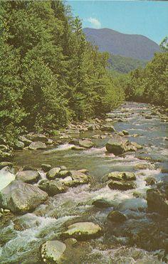 smoky mountains   Vintage Travel Postcards: Great Smoky Mountains National Park