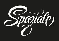Spaziale - Logo Desing for Dj Spaziale | by Luca Barcellona - Calligraphy & Lettering Arts