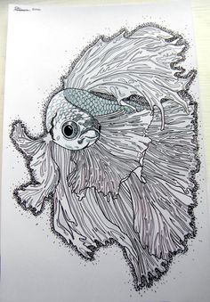 A5 Siamese fighting fish drawing by PorsheyCraft on Etsy