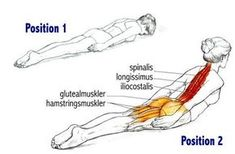 Do this simple exercise only 3 times a week and you will finally get rid of your back pain. - Do this simple exercise only 3 times a week and you will finally get rid of your back pain. Fitness Workouts, Sport Fitness, Easy Workouts, Yoga Fitness, Fitness Motivation, Health Fitness, Fitness Studio, Get In Shape, Back Pain