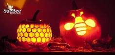 Time to start thinking about Jack-O'-Lanterns! Check out our Honey Bee Pumpkin Stencils!