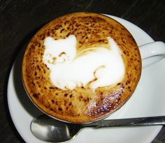 coffee cat Good to drink. Yummy. Happy Caturday Saturday. From a coffee perspective. Enjoy yours today. Incensewoman