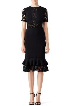 Black Flutter Lace Dress by Sachin & Babi Rent Dresses, Dresses For Sale, Casual Dresses, Cocktail Outfit, Evening Attire, Lace Jacket, Womens Cocktail Dresses, Lace Dress Black, Review Dresses