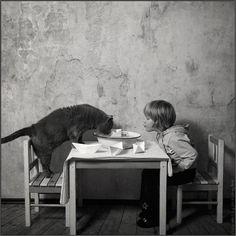 AndyProkh-cat-06