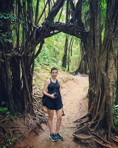 Jurrasic Park. Hawaii Trip <3  #annadziubek #bydziubeka #bracelet #hawaii #amazing #view #landscapes #hot #summer #bydziubekaintravel #travel #jewellery #fashion #bijoux #ootd #like #love
