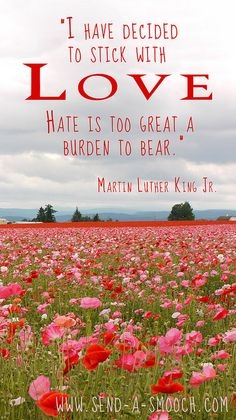MLK Love quote with poppies by Send-A-Smooch, via Flickr  #MLK #martin_luther_king