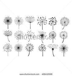 Dandelion Fluffy Seeds Flowers . Hand Drawn Doodle Style Black And White Drawing Vector Icons Set