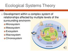 what is a exosystem - Google Search