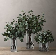 Faux Eucalyptus in Illusion Water – Wedding centerpieces Wedding Centerpieces, Wedding Table, Wedding Bouquets, Rustic Wedding, Wedding Decorations, Wedding Ceremony, Gown Wedding, Elegant Wedding, Reception