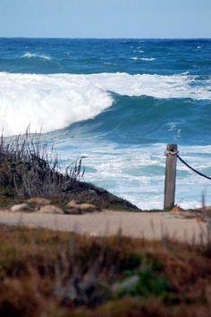 surf + sand.