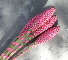 Lavender Wands  Fuchsia Hot Pink Huge by Pedricks on Etsy, $15.00