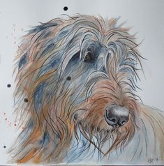 Watercolor Pictures, Watercolor Animals, Irish Wolfhound Dogs, Greyhound Art, Dog Stories, Lurcher, Yorkshire, Dog Paintings, Whippet