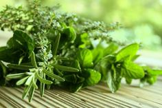 How To Harvest and Preserve Your Garden Herbs. tips on how to harvest herbs, and clever ways to preserve them so you have fresh from the garden flavor all year long. Growing Vegetables Indoors, Growing Tomatoes, Organic Herbs, Organic Gardening, Natural Herbs, Culture D'herbes, Cooking Herbs, Greenhouse Plants, Healthy Herbs
