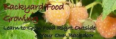 Backyard Food Growing Made Easy
