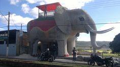 Uma Casa em forma de Elefante!!! Na cidade de Cordisburgo - MG - Brasil. Veja mais: http://milenegualberto.blogspot.com.br/2012/07/por-ai.html