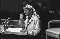"""Yasser Arafat discursando na histórica Assembleia Geral da ONU em 13 de novembro de 1974, quando a OLP conquistou o status de membro observador: """"Hoje, eu trouxe um ramo de oliveira e a arma de um combatente da liberdade; não deixem que o ramo de oliveira caia da minha mão. Repito: não deixem que o ramo de oliveira caia da minha mão""""."""