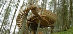 Gwdy Hw – Powys. Come and live in the trees! A return to the simple life awaits you, thirty feet off the floor...