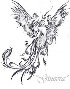 Phoenix tattoo,  totally want something like this!