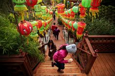 First Full Moon Ceremony of the Lunar New Year in Seattle  | Picture This | The Seattle Times