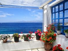 View to the blue Greek Blue, Greek Islands, View Image, More Photos, Greece, Have Fun, Colours, Table Decorations, Plants