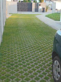 TRIvodyMALINOVO Drivable grass, planted 2016. Photo taken AUG-17. #ourGREENway